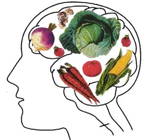Benefits of vegetarian food essay