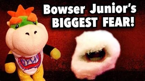 Sml Bowser Juniors Homework